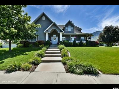 Springville Single Family Home For Sale: 1097 S Cranberry Way