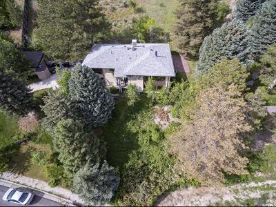 Springville Single Family Home For Sale: 96 N 1540 E
