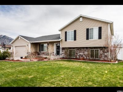Nibley Single Family Home For Sale: 904 W 2675 S