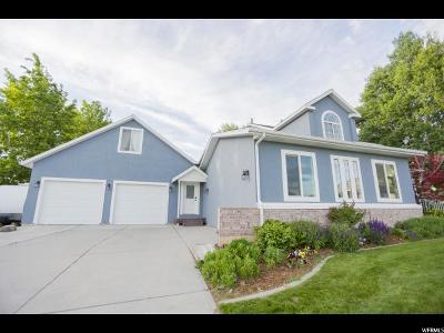 Alpine Single Family Home For Sale: 206 W Sunset Dr