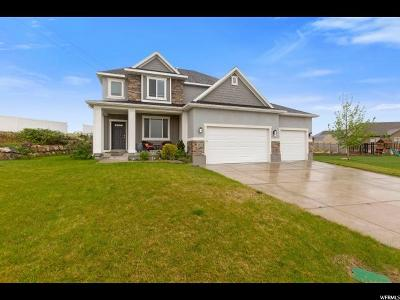 Lehi Single Family Home For Sale: 3502 N 700 W