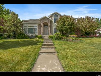 South Jordan Single Family Home For Sale: 1146 W Jordan River Dr