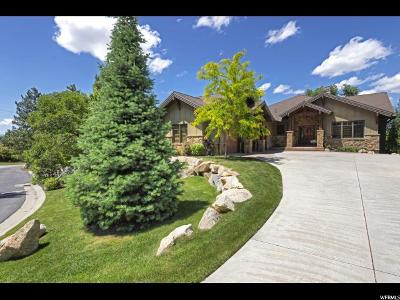 Sandy Single Family Home For Sale: 3307 E Wasatch Pines Ln