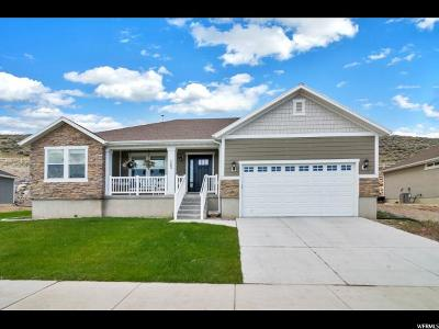 Saratoga Springs Single Family Home For Sale: 143 W Parkside Dr