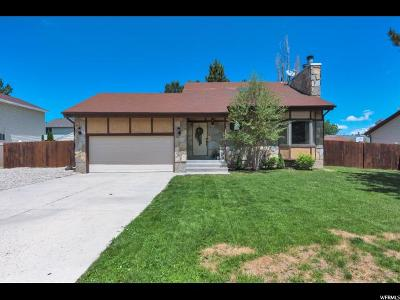Single Family Home For Sale: 3974 W Donalbain St