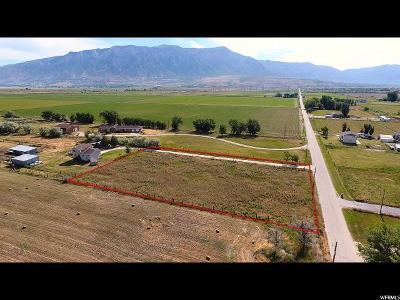 Weber County Residential Lots & Land For Sale: 4216 W 4000 N