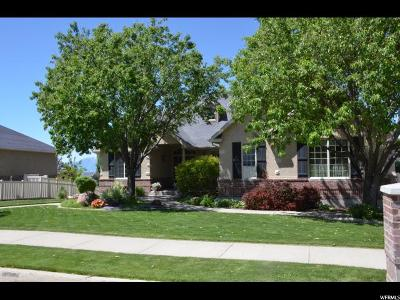 Smithfield Single Family Home For Sale: 423 S 900 E