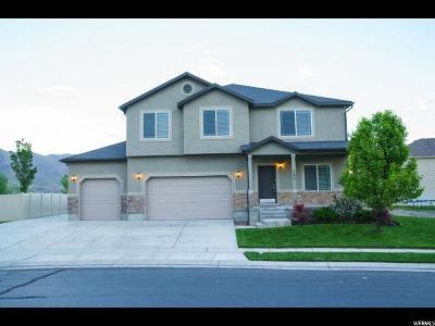 Eagle Mountain Single Family Home For Sale: 1220 E Searle