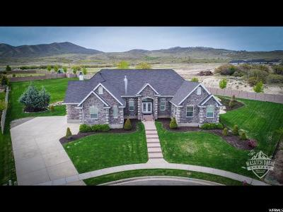 Highland Single Family Home For Sale: 11769 N Sunset Hills Dr
