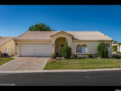 Single Family Home For Sale: 225 N Valley View Dr