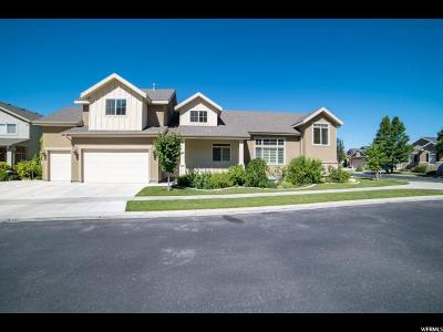 Cedar Hills Single Family Home For Sale: 4057 W Troon