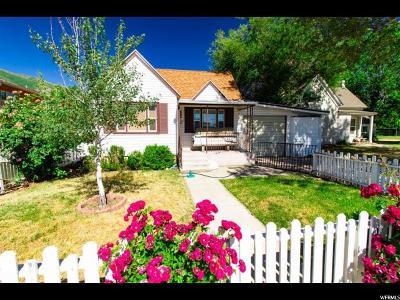 Springville Single Family Home For Sale: 503 S 200 E