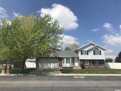 Spanish Fork Single Family Home For Sale: 226 S 1400 E