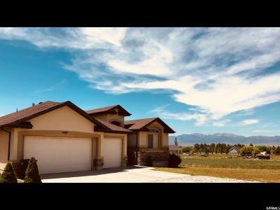Erda Single Family Home For Sale: 5469 Droubay Rd