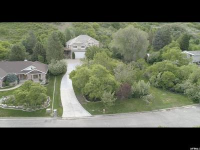 Layton Single Family Home For Sale: 1772 N 3300 E