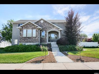 Layton Single Family Home For Sale: 706 S 600 E