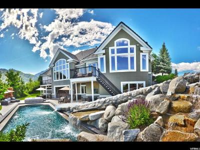 Holladay Single Family Home For Sale: 2662 E Eagles Landing Cv