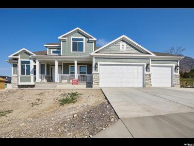 Pleasant Grove Single Family Home For Sale: 937 E 800 S