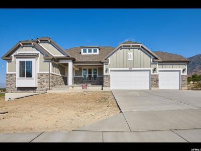 Pleasant Grove Single Family Home For Sale: 929 E 810 S