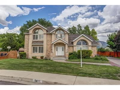 Orem Single Family Home For Sale: 54 W 680 S
