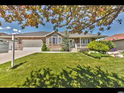 West Jordan Single Family Home For Sale: 1058 W Trimble Creek Dr