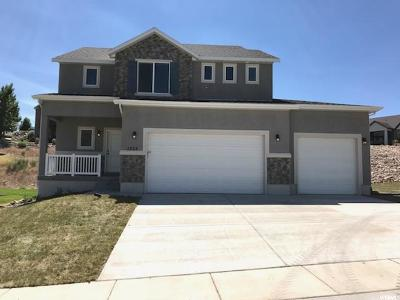Santaquin Single Family Home For Sale: 1253 E Sageberry Dr