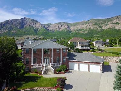Weber County Single Family Home For Sale: 848 E 3250 N