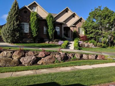 Alpine Single Family Home For Sale: 636 E High Ridge Ln