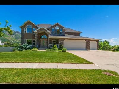 Layton Single Family Home For Sale: 2252 Canyon View Dr