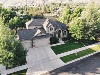 Orem Single Family Home For Sale: 137 E 1570 N