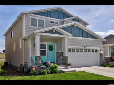 Bluffdale Single Family Home For Sale: 617 W Koins Way