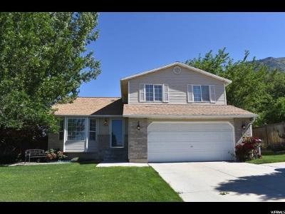 Pleasant Grove Single Family Home For Sale: 355 E 1640 N