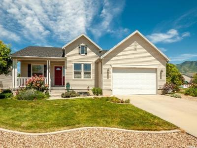 Stansbury Park Single Family Home For Sale: 5914 N Genoa Ln