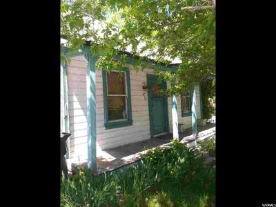 Park City Single Family Home For Sale: 959 Park Ave