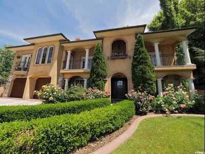 Farmington Single Family Home For Sale: 1106 N Quail Cir W