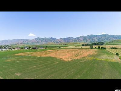 Paradise Residential Lots & Land For Sale: 200 E 9550 S