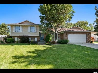 Sandy Single Family Home For Sale: 1605 Success Ln