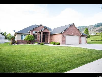 Providence Single Family Home For Sale: 289 E 875 S