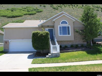 Draper Single Family Home For Sale: 358 E Steep Mountain Dr