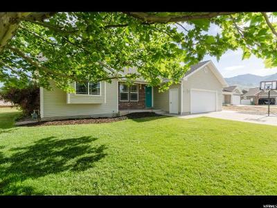 Smithfield Single Family Home For Sale: 201 E 620 S
