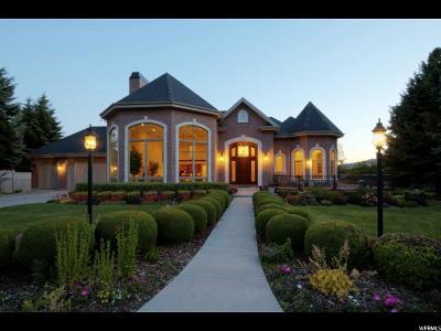 Alpine Single Family Home For Sale: 1100 N Elk Ridge Ln