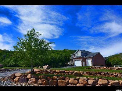 Weber County Single Family Home For Sale: 1984 E 6925 N