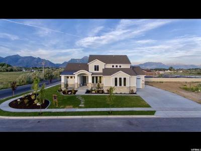 Lehi Single Family Home For Sale: 890 N 1350 W