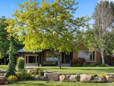 Pleasant Grove Single Family Home For Sale: 1135 E 900 S