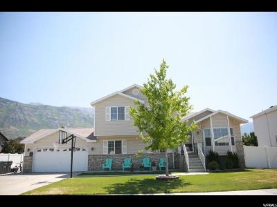 Pleasant Grove Single Family Home For Sale: 1204 N 1730 W
