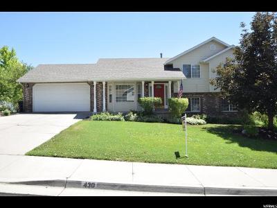 Springville Single Family Home For Sale: 430 E 1100 N