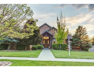 Draper Single Family Home For Sale: 12646 S Wilding Way E