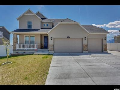 West Jordan Single Family Home For Sale: 6561 W Annie Lee Way
