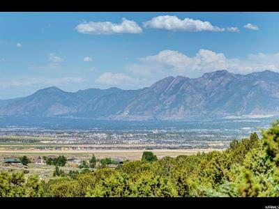 Herriman Residential Lots & Land For Sale: 8172 W Dry Canyon Cir S