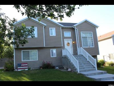 Eagle Mountain Single Family Home For Sale: 7817 N Apache Ln